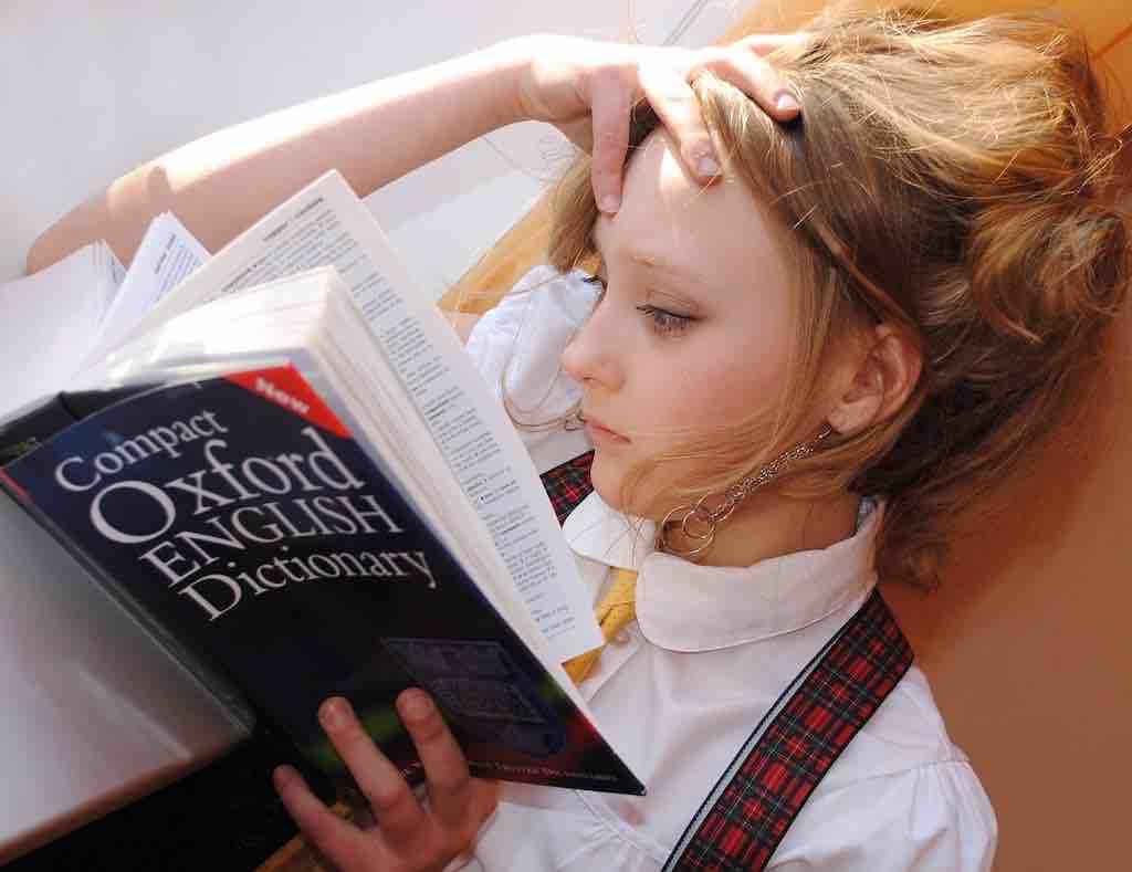 【単語帳の使い方】記憶のしくみを理解して効率よく覚えよう!